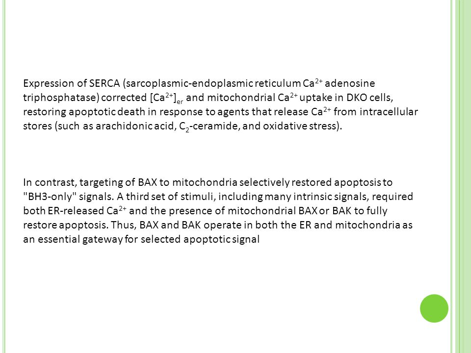 Expression of SERCA (sarcoplasmic-endoplasmic reticulum Ca2+ adenosine triphosphatase) corrected [Ca2+]er and mitochondrial Ca2+ uptake in DKO cells, restoring apoptotic death in response to agents that release Ca2+ from intracellular stores (such as arachidonic acid, C2-ceramide, and oxidative stress).